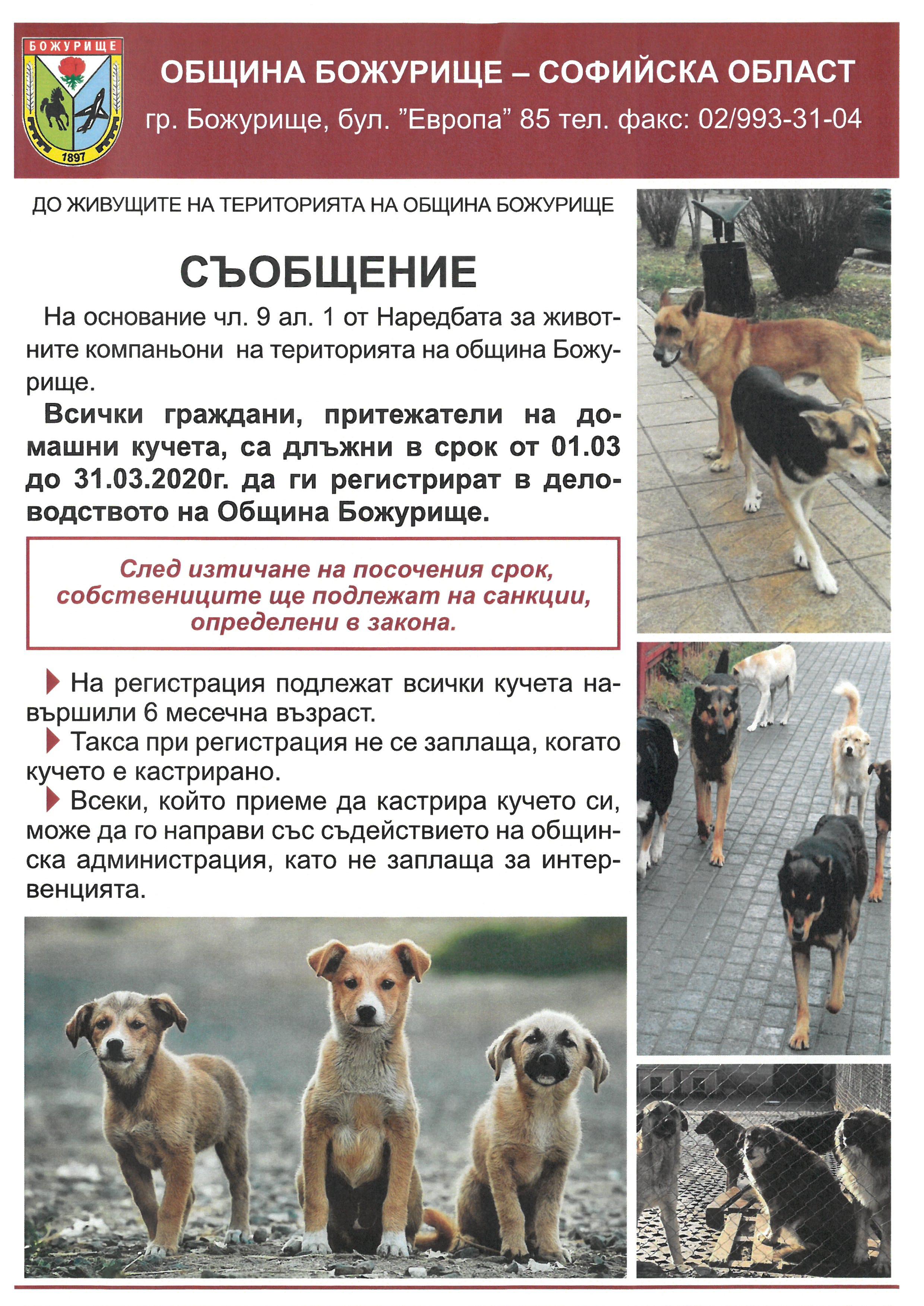 До всички притежатели на домашни кучета на територията на община Божурище